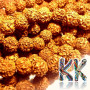 Beads made of rudraksha tree nuts with a diameter of 12 mm and a hole for a thread with a diameter of 0.5-1 mm. These are called 5 mukhi rudraksha beads. The beads come from India and may differ by up to 0.8 mm from the stated size due to manual sorting. The beads are stained with an extract of root vegetable dyes, which has traditionally been used in India to protect beads for hundreds of years.THE PRICE IS FOR 1 PCS.