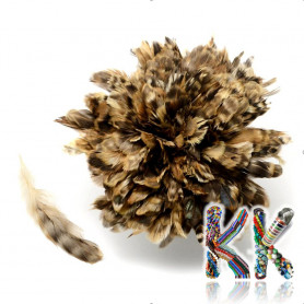 Natural pheasant feathers - 120-160 x 10-21 mm