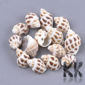 Natural shell beads - 23-32 x 14-20 x 12-17 mm
