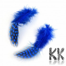 Colored chicken feathers - 65-135 x 25-45 mm