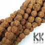 Beads made of rudraksha tree nuts with a diameter of 10 mm and a hole for a thread with a diameter of 0.8-1 mm. These are called 5 mukhi rudraksha beads. The beads come from India and may differ by up to 0.8 mm from the stated size due to manual sorting. The beads are absolutely natural without any dye. Country of origin: India THE PRICE IS FOR 1 PCS.