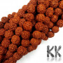 Beads made of rudraksha tree nuts with a diameter of 10 mm and a hole for a thread with a diameter of 0.5-1 mm. These are called 5 mukhi rudraksha beads. The beads come from India and may differ by up to 0.8 mm from the stated size due to manual sorting. The beads are stained with an extract of root vegetable dyes, which has traditionally been used in India to protect beads for hundreds of years.THE PRICE IS FOR 1 PCS.
