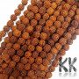 Beads made of rudraksha tree nuts with a diameter of 9 mm and a hole for a thread with a diameter of 0.5-1 mm. These are called 5 mukhi rudraksha beads. The beads come from India and may differ by up to 0.8 mm from the stated size due to manual sorting. The beads are stained with an extract of root vegetable dyes, which has traditionally been used in India to protect beads for hundreds of years.THE PRICE IS FOR 1 PCS.