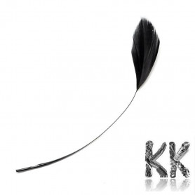 Dyed goose feathers - 130 - 190 x 12 - 38 mm