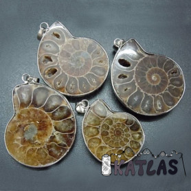 Natural Fossilized Ammonite - 35-50 x 25-35 x 8 mm, Hole: 4 x 6 mm - Pendant